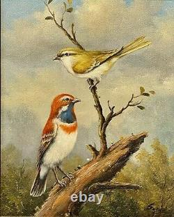 Fabulous Vintage a Couple Birds In On The Tree By Sonje Framed And Signed