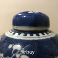 Pair Chinese 19th C Kangxi Blue & White Prunus Jars Kangxi Mark With Stands