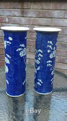 Pair of antique Chinese porcelain Prunas Mei or plum blossom vases